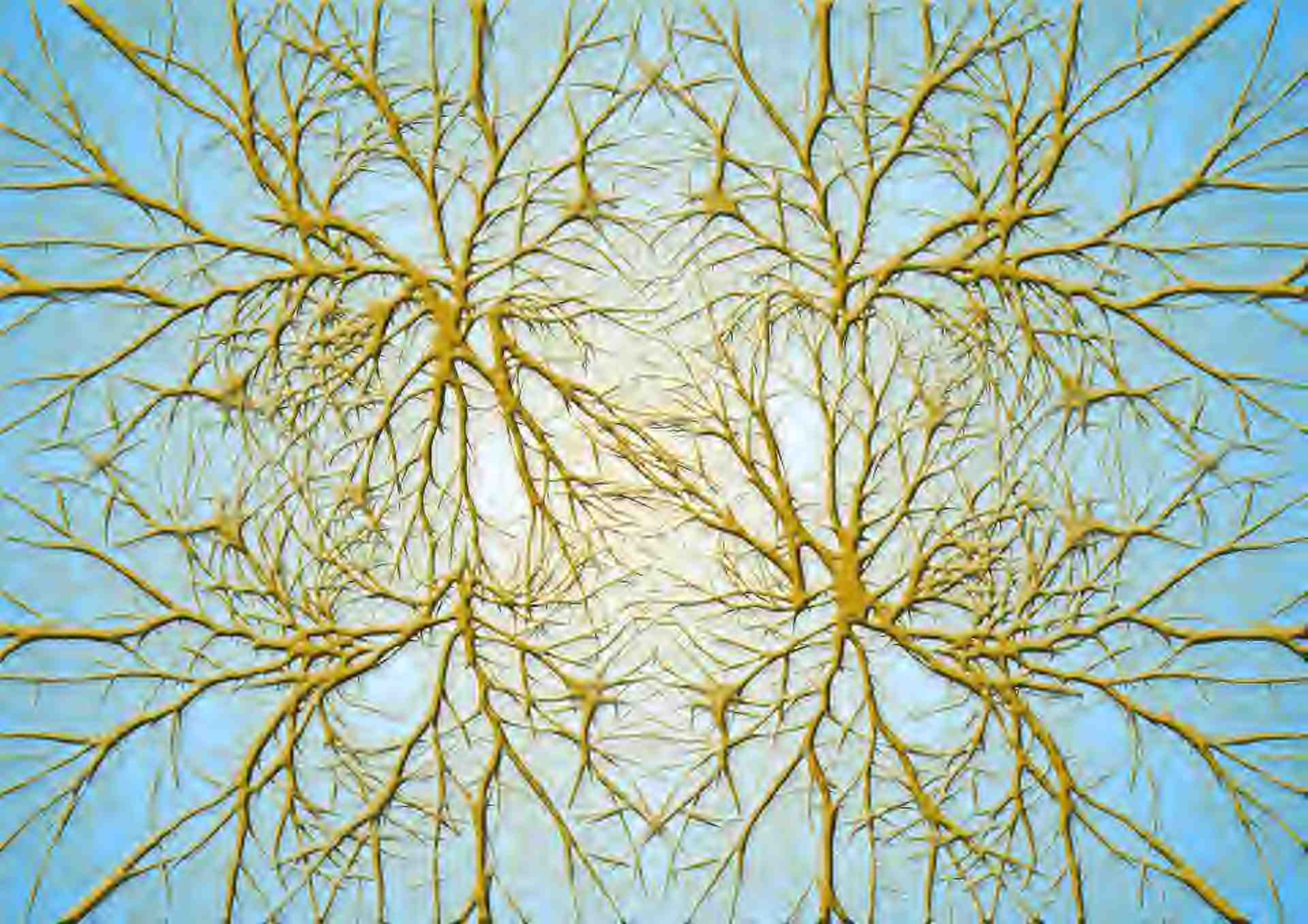 knotted neuron
